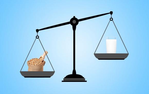 canxi, thực phẩm giàu canxi, thực phẩm giàu canxi hơn sữa, bổ sung canxi