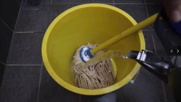 cây lau nhà, làm sạch, vệ sinh, mẹo hay, lau nhà