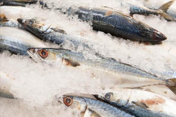 rã đông, cá đông lạnh, mẹo nấu ăn