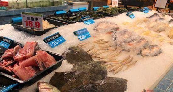 hải sản, an toàn thực phầm, loại hải sản chứa khuẩn