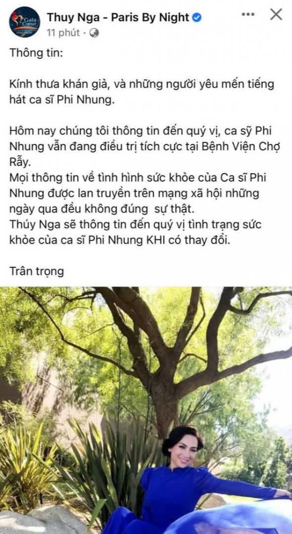 Ca sĩ Mạnh Quỳnh, Phi Nhung, Sao Việt, Tình hình sức khỏe