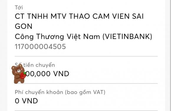 Trung Quân Idol, ca sĩ Trung Quân Idol, sao Việt
