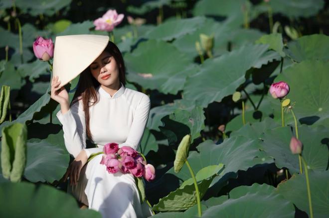 Nguyễn Loan 0