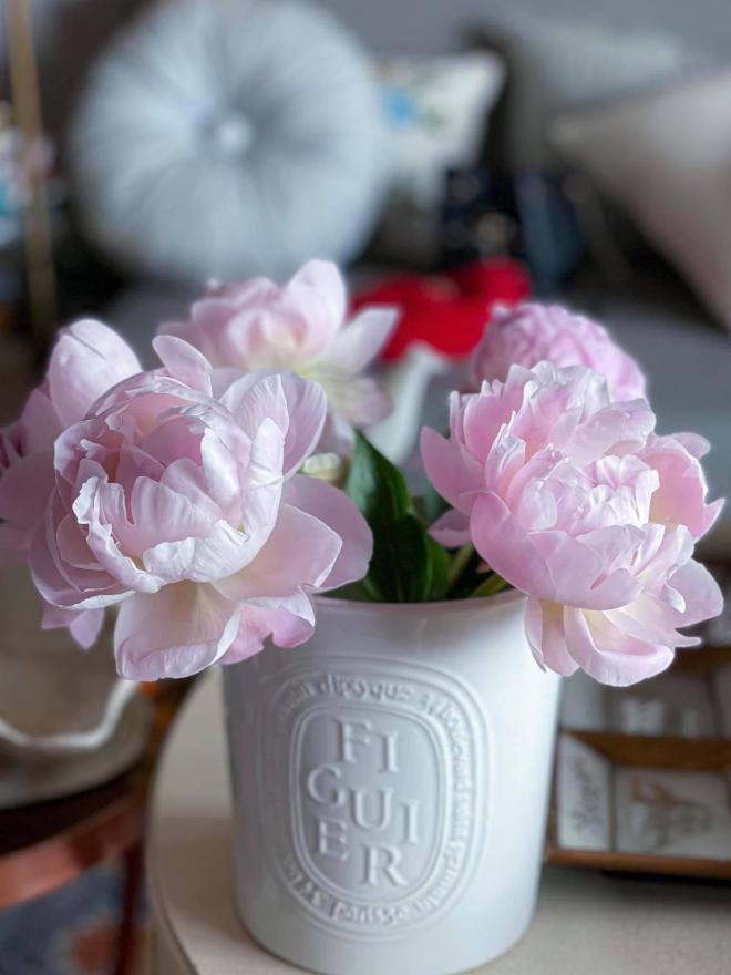 Lý Quí Khánh và hoa 10