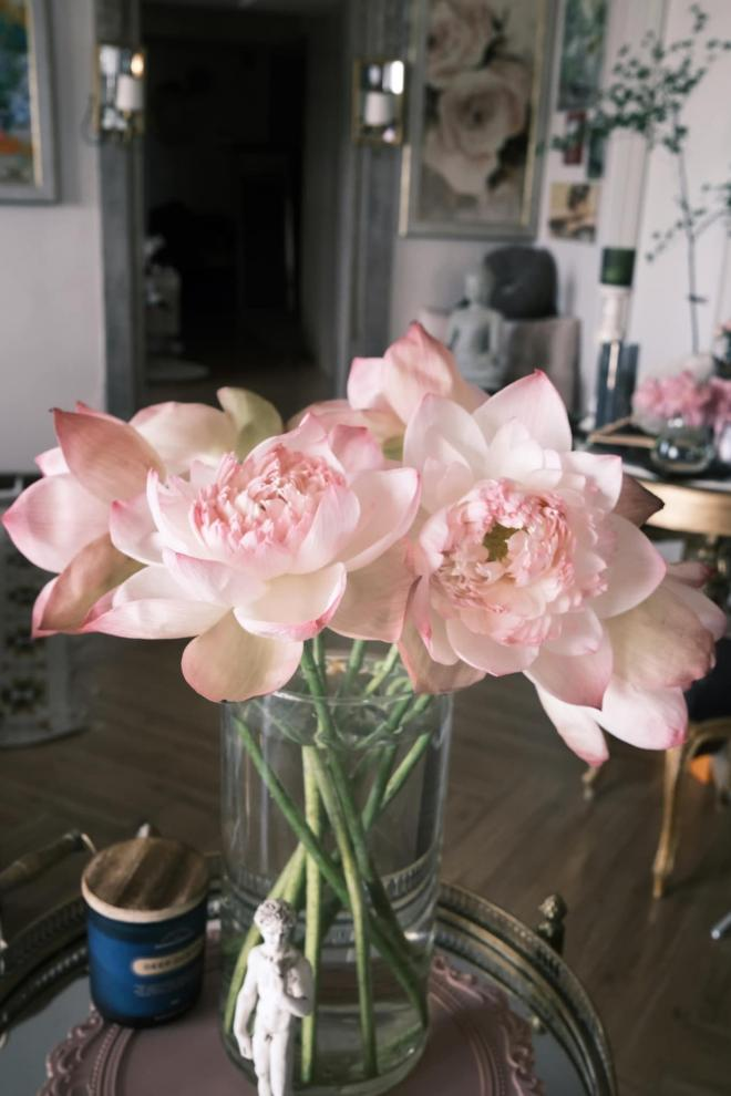 Lý Quí Khánh và hoa 2