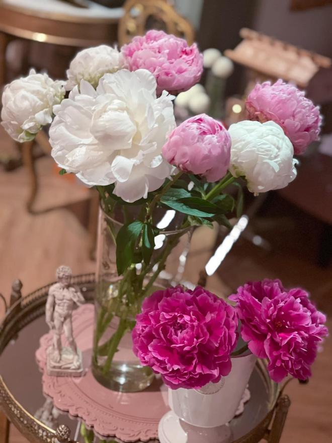 Lý Quí Khánh và hoa 3