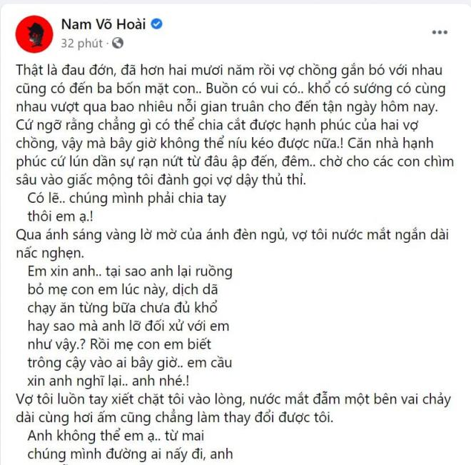 Võ Hoài Nam 0